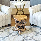 """WELLAND Tree Stump Side Table, Live Edge Stool, Natural Edge Wood Side Table, Accent Table, 19"""" Tall"""