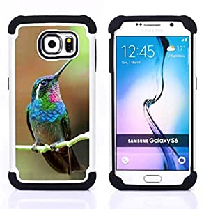 """Samsung Galaxy S6 / SM-G920 - 3 en 1 impreso colorido de Altas Prestaciones PC Funda chaqueta Negro cubierta gel silicona suave (Colibrí minúsculo lindo Tropical Exótico"""")"""