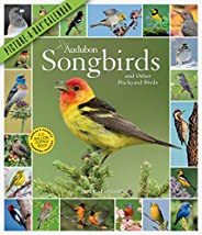 Audubon Songbirds and Other Backyard Birds Picture-A-Day Wall Calendar 2021