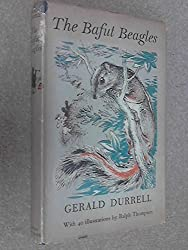 The Bafut Beagles.