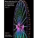Precalculus 2: An Investigation of Trigonometry (Chps 5-9) (Precalculus: An Investigation of Functions) (Volume 2)