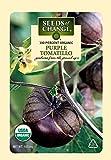 Seeds of Change 01179 Certified Organic Tomatillo, Purple