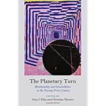 The Planetary Turn: Relationality and Geoaesthetics in the Twenty-First Century