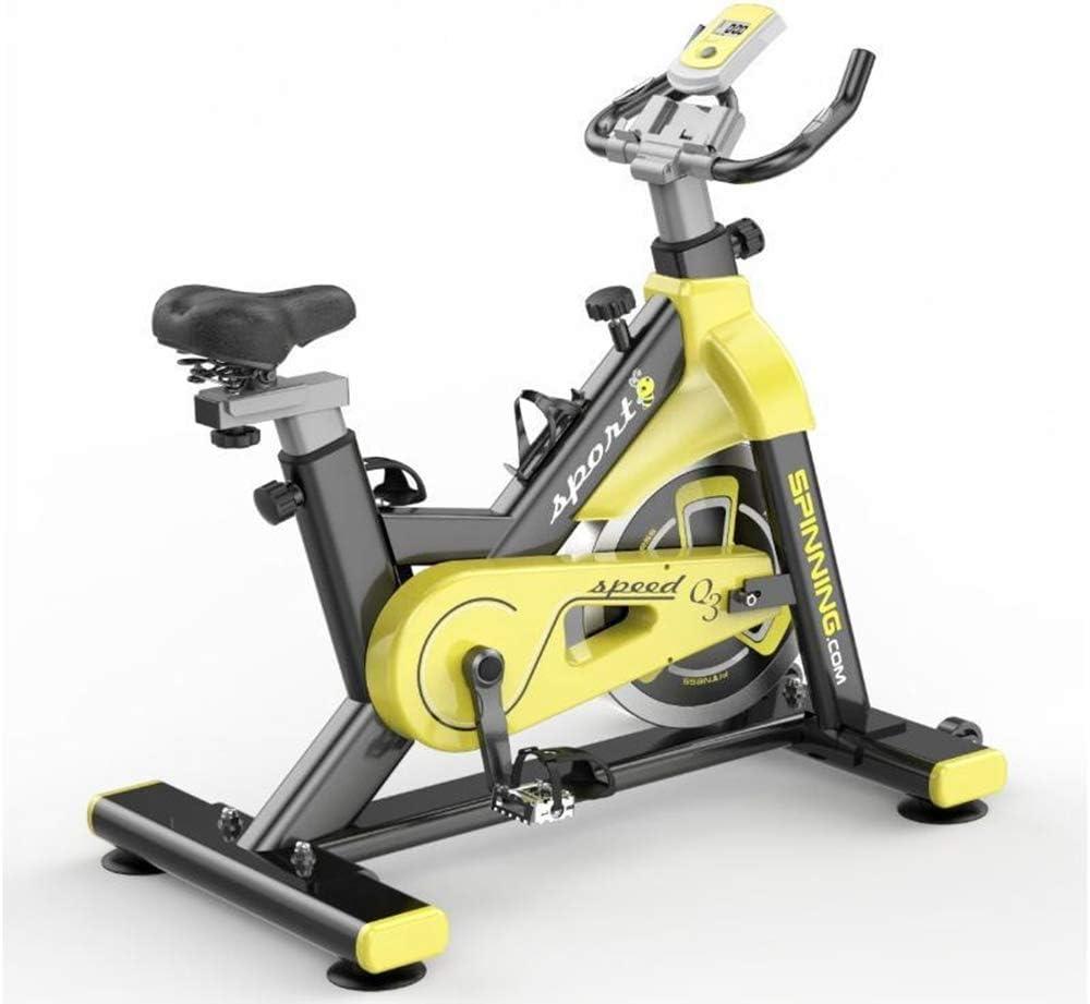 YourBooy Bicicleta estática Profesional para Interiores con ...