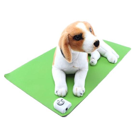 AL Baja Tensión Mascota Electro-Térmico Impermeable Almohadilla Caliente 3 Minutos Rápido Fiebre Manta Eléctrica Mascota Almohadilla Térmica: Amazon.es: ...