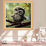MEXUD -DIY 5D Owl Diamond Painting Embroidery Crafts Cross Stitch Home Room Wall Decor