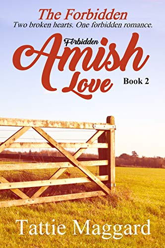 The Forbidden (Forbidden Amish Love Book 2)