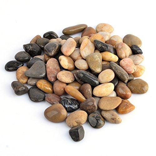 River Pebbles, GTKRTU 2.9lb/1300g River Rock Stones Polished Gravel For Aquariums, Landscaping, Vase Fillers, Succulent, Tillandsia, Cactus pot, Terrarium - Mixed by GTKRTU