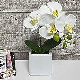 small flower arrangements  Artificial Flower Arrangement Lifelike Silk Orchid Artificial Flower with Decorative Ceramic White Square Vase Vivid Potted Orchid Plant,White