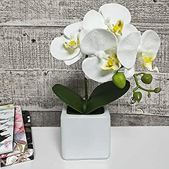 LIVILAN Artificial Flower Arrangement Lifelike Silk Orchid Artificial Flower with Decorative Ceramic White Square Vase Vivid Potted Orchid Plant,White