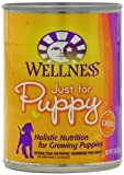 Wellness Canned Dog Food for Puppy, Just for Puppy Recipe, 12-Pack of 12-1/2-Ounce Cans