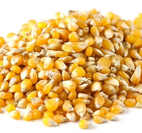 Bulk Non-GMO Ladyfinger Popcorn, 3.5 Lb. Bag -