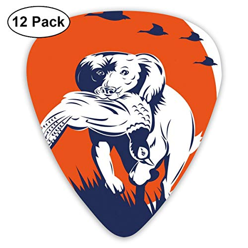 (Guitar Picks - Abstract Art Colorful Designs,Cocker Spaniel Breed Dog Retrieving The Pheasant Flying Ducks At Sunset,Unique Guitar Gift,For Bass Electric & Acoustic Guitars-12 Pack)