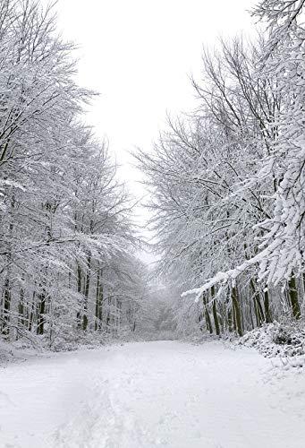 Christmas Background Portrait.Amazon Com Yeele 6 5x10ft Winter Snow Covered Trees
