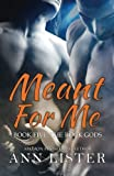 Meant For Me: Volume 5 (The Rock Gods)