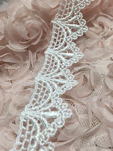 Delicate Lace Trim - 1