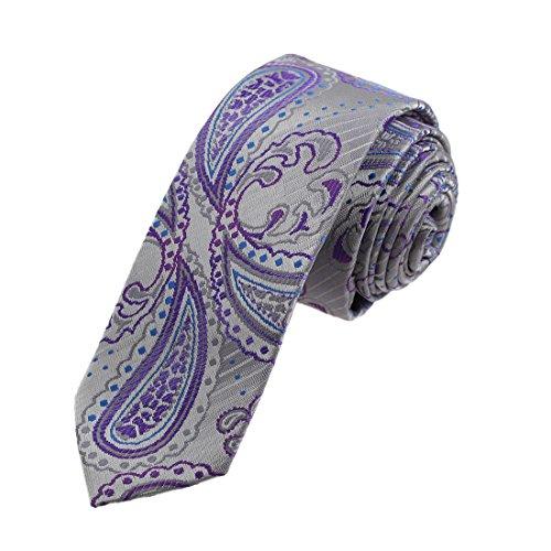 Dan Smith DAE7B09B Grey Blue Purple Paisley Microfiber Skinny Tie Discount For Mens Narrow Tie