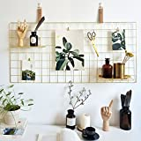 "Rumcent Multifunctional Metal Mesh Grid Panel,Wall Decor/Photo Wall/Wall Art Display & Organizer,Decorative Rack Clip Photograph Wall Hanging Picture wall,Gold Color (17.7"" x 37.4"")"