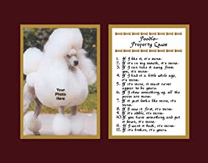 Poodle Property Laws Wall Decor Pet Dog Saying Gift