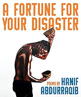 Book Cover: A Fortune for Your Disaster