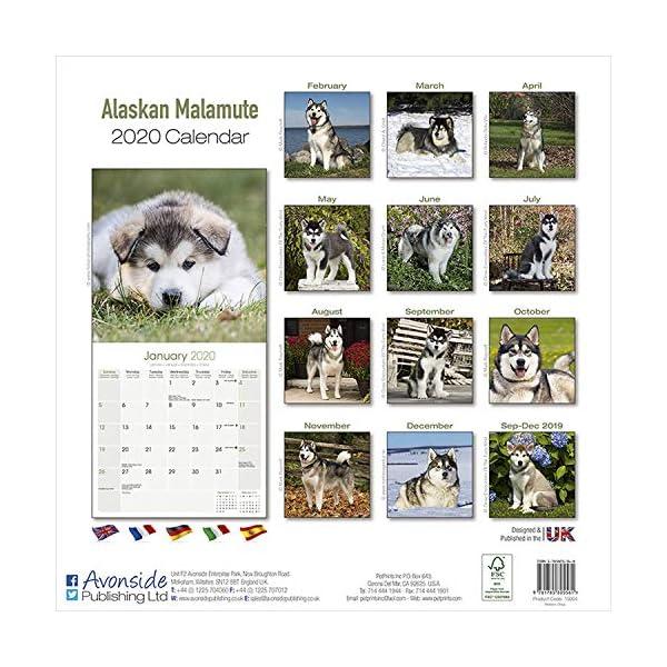 Alaskan Malamute Calendar - Dog Breed Calendars - 2019 - 2020 Wall Calendars - 16 Month by Avonside 1