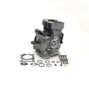 Briggs & Stratton 592058 Lawn & Garden Equipment Engine Short Block Genuine Original Equipment Manufacturer (OEM) Part