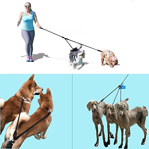 Heavy Duty Dual Dog Leash /Triple Dog Leash,360°Swivel No Tangle Double Dog Walking Training Leash,2-way&3-way interchangeable Lead with Hand-protected Handle Waste Bag Dispenser for Two/Three Dogs by SonQueen (Image #7)'