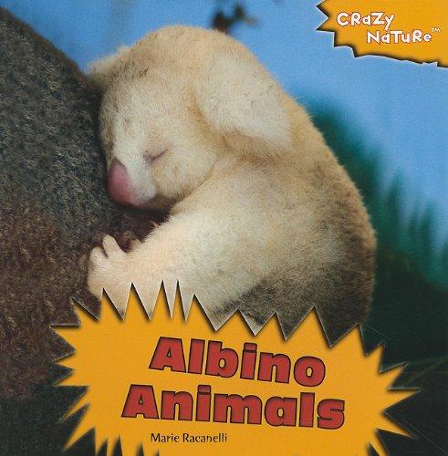 Albino Animals (Crazy Nature) - Animals Albino