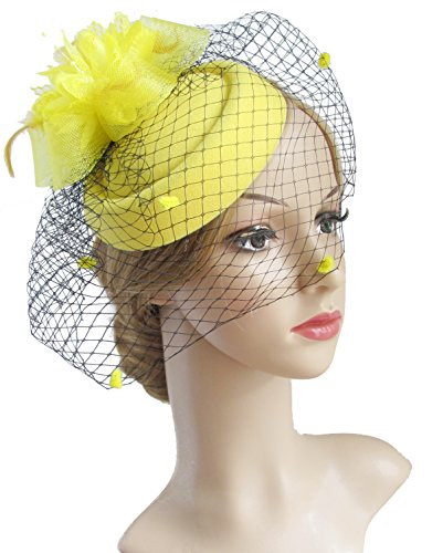 K.CLASSIC Fascinator Hair Clip Pillbox Hat Bowler Feather Fl