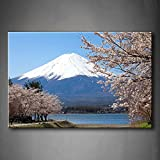Best Fuji Acrylic Paints - First Wall Art - Mountain Fuji In Spring Review