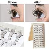 5 Or 10 Pairs Beautiful Long Natural Thick Handmade Makeup False Eyelashes Lashes UK SELLER (217 - 10 Pairs)