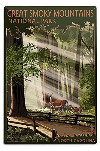 Lantern Press Great Smoky Mountains, North Carolina - Deer and Fawn (12x18 Aluminum Wall Sign, Wall Decor Ready to Hang)