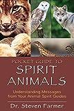 Pocket Guide to Spirit Animals: Understanding