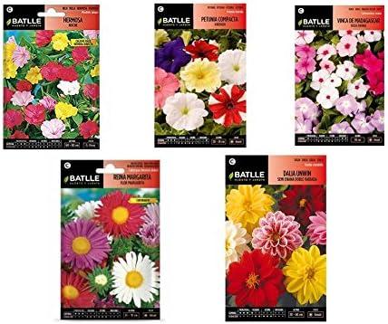 flores en sobre semilas VINCA