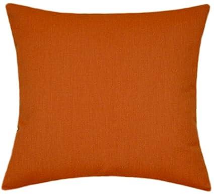 Phenomenal Amazon Com Sunbrella Rust Indoor Outdoor Solid Pillow 14X14 Theyellowbook Wood Chair Design Ideas Theyellowbookinfo