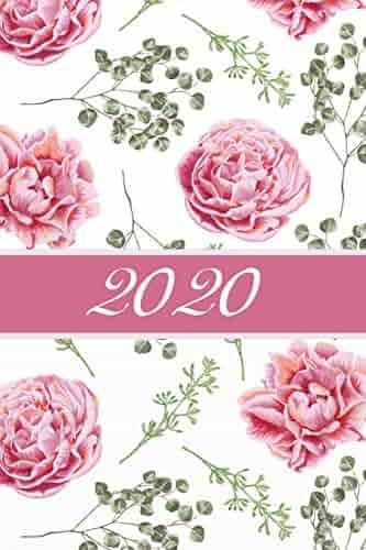 Calendario Rosa 2020.Shopping Roses Flowers Gardening Landscape Design