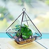 jinxin Modern Artistic Clear Glass Geometric Terrarium Five-surfaces Diamond Succulent Fern Moss Terrarium with Loop Hanging flowerpots