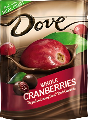 DOVE Fruit Chocolate Cranberries 6 Ounce