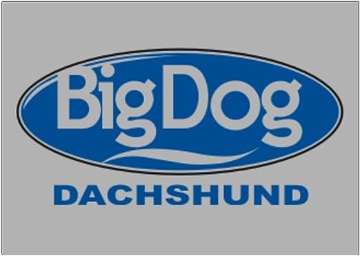 Teeburon Big Dog Dachshund Pack de Pegatinas x4: Amazon.es: Hogar