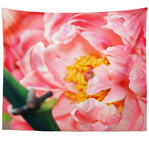 Westlake Art Wall Hanging Tapestry - Petals Blossom - Photography Home Decor Living Room - 26x36in - Rose Petal Cottage Collection
