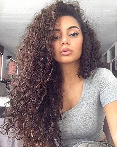Candice Hair Synthetic Wig Lace Front Wigs Long Loose Curly with Baby Hair Natural Hairline Heat Resistant Fiber Lace Wigs Swiss Natural Brown Wig For Black Women 180 Density 24 Inch 6# Color]()