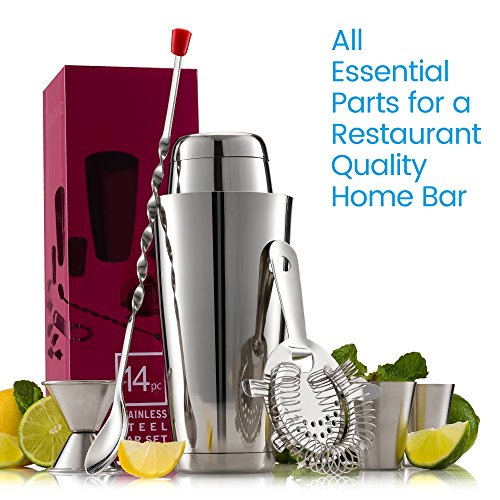 Expert-Cocktail-Shaker-Home-Bar-Set-14-Piece-Stainless-Steel-Bar-Tools-Kit-with-Shaking-Tins-Flat-Bottle-Opener-Double-Bar-Jigger-Hawthorne-Strainer-Shot-Glasses-Bar-Spoon-and-6-Pour-Spouts