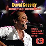 I Think I Love You: Greatest Hits Live (W/Dvd)