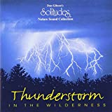 : Thunderstorm in the Wilderness