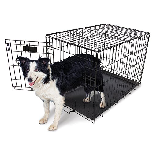 Aspen Pet Home Training Wire Crate, Black - Small (10 - 25 (Doskocil Kennel)