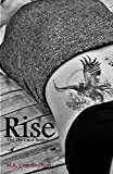 Download Rise (The Phoenix Series Book 1) in PDF ePUB Free Online