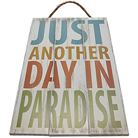 51bqGKnJdkL._SS450_ The Best Wooden Beach Signs You Can Buy