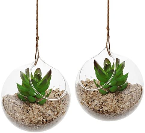 Set of 2 Decorative Clear Glass Globe Hanging Air Plant Terrarium Planter Candle Holder – MyGift