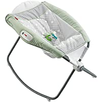 Fisher Price Newborn Rock 'n Play Sleeper, Multi