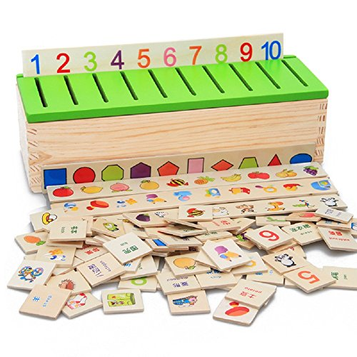 Wooden Learning Card sorting box with green plastic cover, 8 sorting Categories: Vegetables, figures, fruits, shapes, vehicles, daily necessities, animals, clothing Vegetable Insert Cover